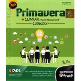 Primavera + Comfar (project managment) Collection